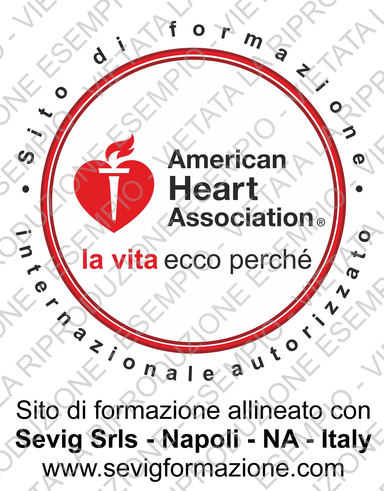 Logo ritagliato Sito formazione Internazionel AHA (HD)